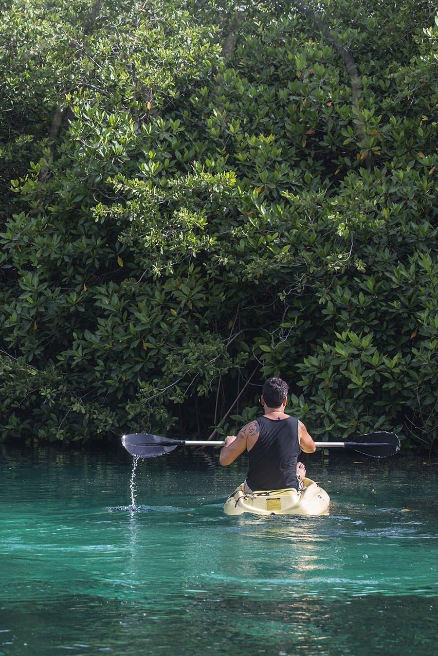 mayan-and-monkey-adenture-tulum-colibri-hotel-jungle